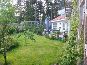 Vårt hus och katternas trädgård